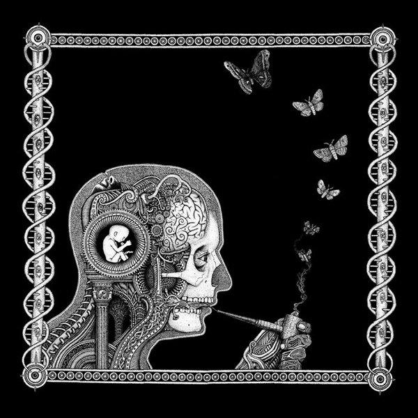 """La copertina di """"Cognitive"""", Soen: un viaggio sciamanico tra le farfalle"""