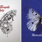 Similitudini: Stone Temple Pilots – Francesco Guccini
