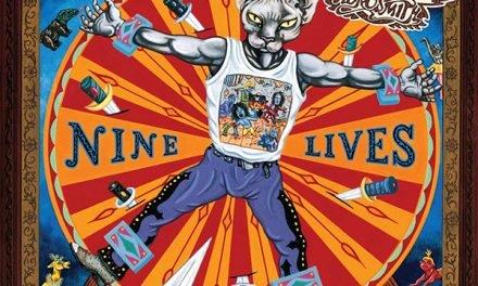 """""""Nive Lives"""": quante vite hanno gli Aerosmith? Molte, come i gatti!"""